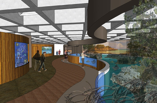 Schematic of New Ray and Shark Exhibit (Courtesy of the New England Aquarium)