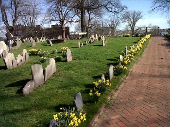 Copps Hill Burying Ground Daffodils - March 2012 by Thomas F. Schiavoni