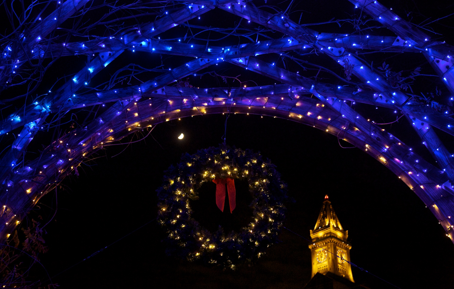 10th annual trellis lighting draws record crowd to christopher