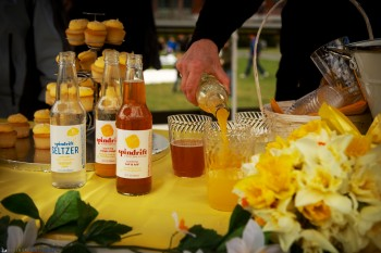 Sponsoring Daffodil Day - Spindrift