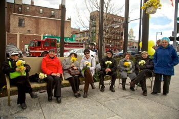 Enjoying Daffodil Day while sitting on the Greenway