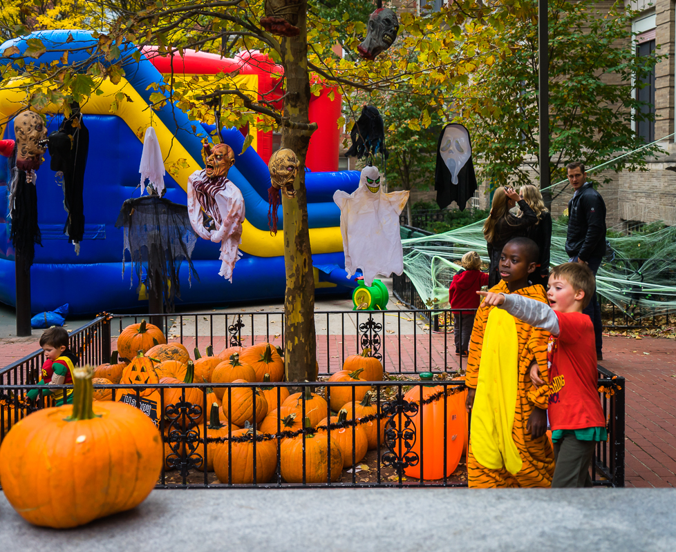 Pumpkin Patch at the Nazzaro Center