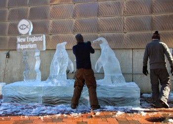 Notable News: Ice Sculptures, Sneaker Wars, Cheap Dishes, Sidewalk Collapse, Sludge Stop
