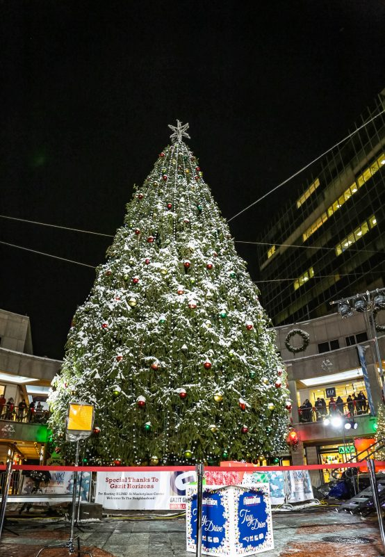 Boston Christmas Tree 2020 Photos Boston's Tallest Tree Lighting Brightens Up Faneuil Hall