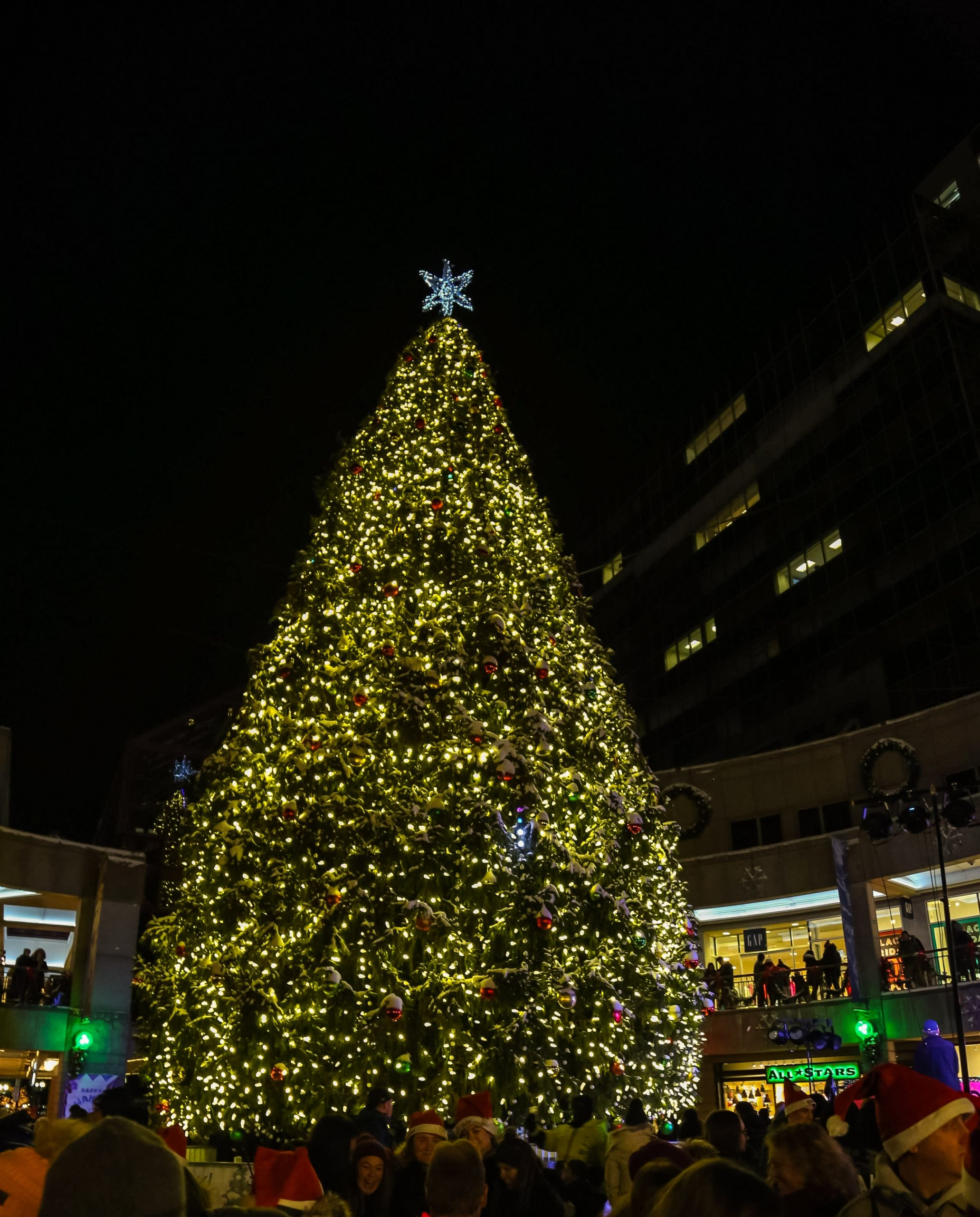When Does Faniell Hall Light The Christmas Tree 2020] Boston's Tallest Tree Lighting Brightens Up Faneuil Hall